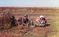 Киргизы-кочевники