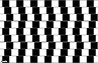 Обман зрения_12