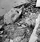 Берлин в 1945 году_10