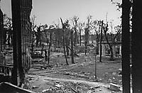 Берлин в 1945 году_12
